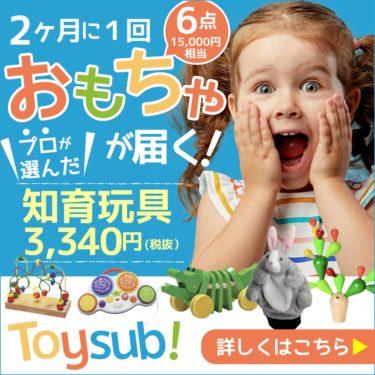 毎日を【トイサブ!】知育玩具の定額レンタルサービス(子供の年齢でカスタマイズ)にする