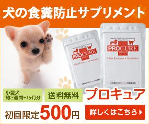 圧巻の酵素とプロバイオティクスのペット(犬・猫)用サプリメント【プロキュア】