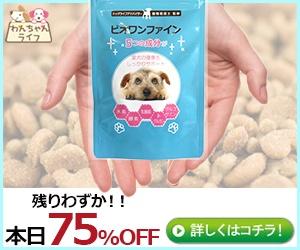 小型犬用スキンケアサプリ【ビオワンファイン】で、できなきゃあきらめる?!